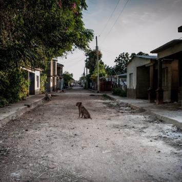 La Parranda - © Daniela Silvestri