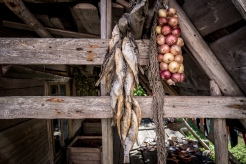Pesca e agricoltura sono la principale attività dei contadini dei villaggi