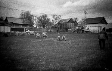 Case nei pressi di Cacica
